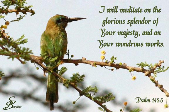 Psalm 145-5