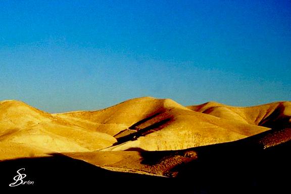 Wilderness of the Judean Hills, Israel
