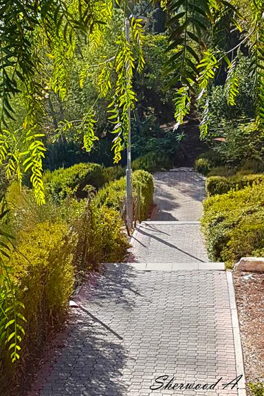 Neighborhood Path